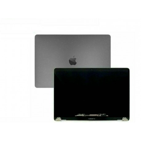 Ecran LCD Complet gris sideral Apple Macbook Pro 16 A2141 2019/2020